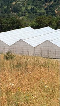 The Farm - Humboldt Natural Farms-3