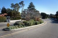 Hermosillo Road Traffic Calming Plantings  Montecito Foundation2