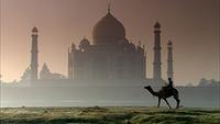 Taj Mahal (5)