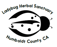 Ladybug Herbal Sanctuary