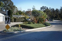 Hermosillo Road Traffic Calming Plantings Montecito Foundation