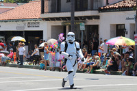 Summer Solstice Parade and Festival 2015 08