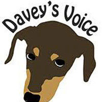 Davey's Voice