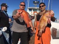 Coral Sea 3.1.17 3/4 day