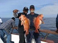 Coral Sea 3.4.17 3/4 day Islands