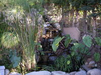 Pond & Waterfall