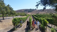 Santa Barbara Vintners Spring Weekend
