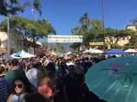 31st Annual Caifornia Avocado Festival 10/6/2017-10/08/2017