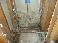 Part 1: Common Places to Find Mold