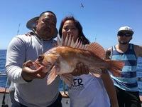 Stardust Rockfish Limits up the Coast!!
