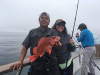 Coral Sea 1/2 day Rockfish Limits