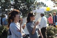 2008 Lemon Festival