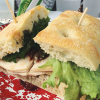 Panino Picnic Lunch-3
