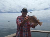Coral Sea has beautiful day fishing local zone