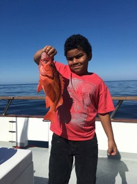 Coral Sea Charter gets Reds