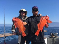 Coral Sea gets Steady Red bite!