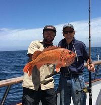 3/4 day Rockfish and lingcod limits at Santa Rosa Island