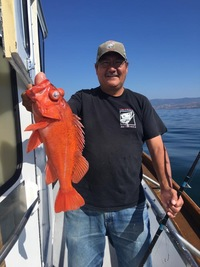 Stardust 3/4 day Limits on Rockfish