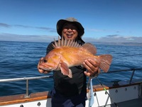 Stardust Coastal 3/4 day