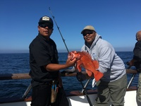 Cora Sea 3/4 day Charter Islands