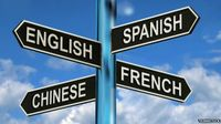 Learning a Second Language Slows Brain Ageing