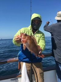 Coral Sea 3/4 day 6.21.17