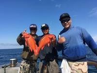 Coral Sea 3/4 day 6.24.17