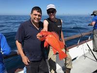 Coral Sea 3/4 day 7.26.17