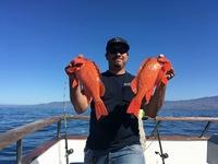 Coral Sea 3/4 day 6.27.17