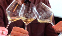 Introducing the NEW Vine to Wine Video Tasting Notes Show