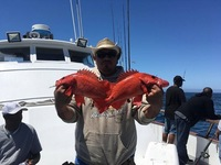 Coral Sea 3/4 day Charter 7.1.17