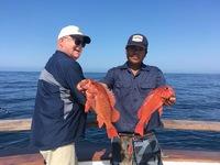 Coral Sea 1/2 day 7.6.17