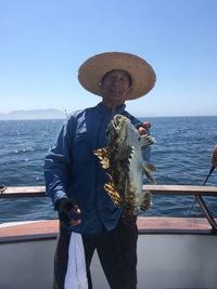 Coral Sea 3/4 day 7.8.17