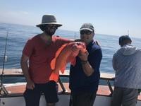 Coral Sea 3/4 day 7.20.17