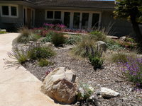 CA Friendly Plants & Stamped Concrete