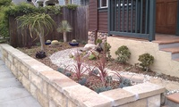 Front Door Drought-Tolerant Plants