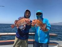 Coral Sea 3/4 day 8.8.17