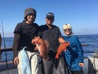 Coral Sea 3/4 day 8.11.17