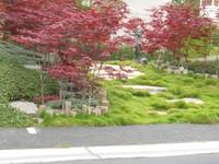 Santa Barbara Landscape Appraisers7
