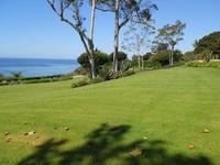 Santa Barbara Landscape Appraisers13