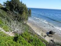 Santa Barbara Landscape Appraisers15
