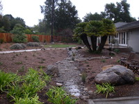 Residential Storm Water Bioswale 1