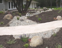 Residential Storm Water Bioswale 2