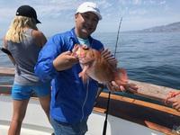 Coral Sea 3/4 day 8.30.17