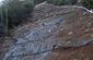 Kay Restoration Irrigation
