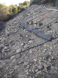 Kay Slope Restoration 1