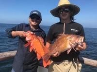 Coral Sea 3/4 day 10.2.17