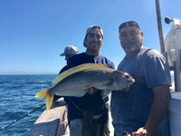 Coral Sea 3/4 day Charter 10.7.17