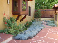 Small Courtyard Planting Design