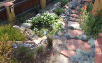 Small Water Feature & Path